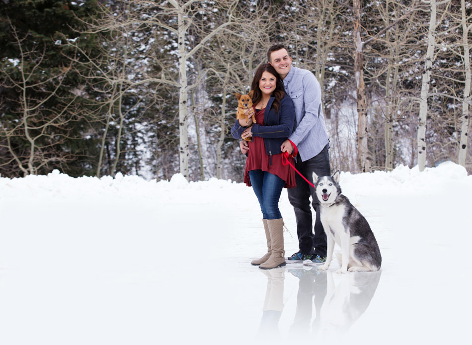 engagement photography with pets and dogs